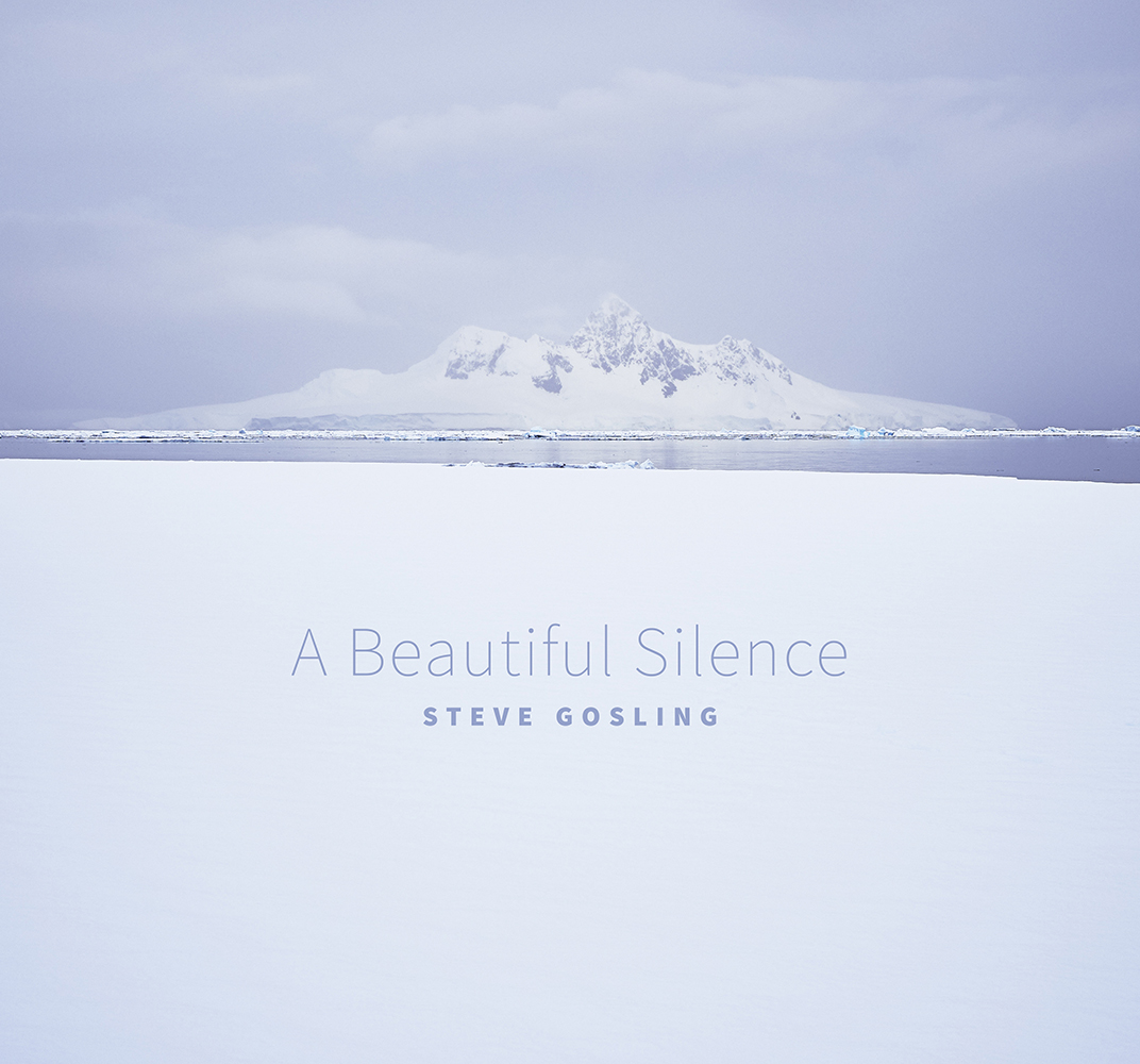 A Beautiful Silence Book