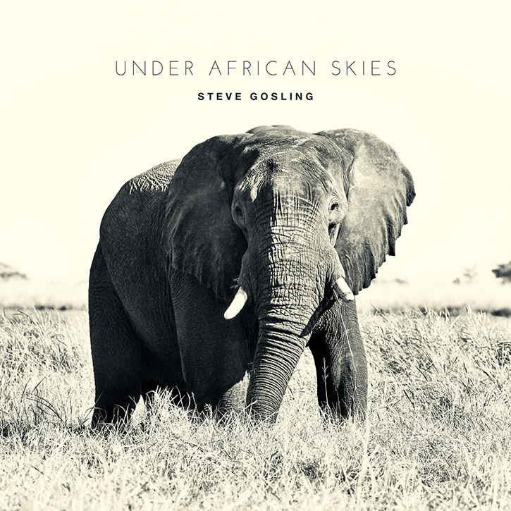 Under African Skies Cover